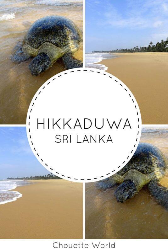 Visiter Hikkaduwa, Sri Lanka