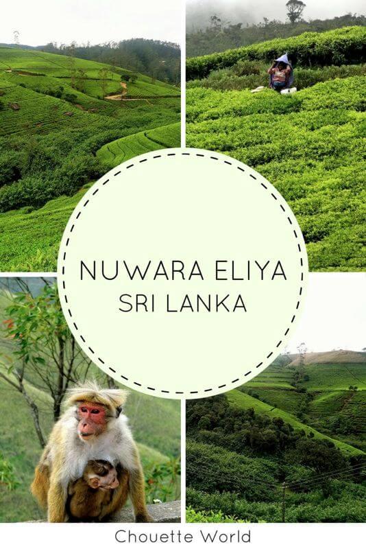 Visiter Nuwara Eliya, Sri Lanka