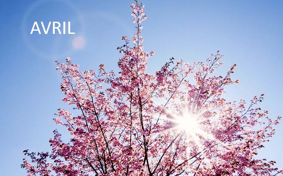 ou partir en avril ?