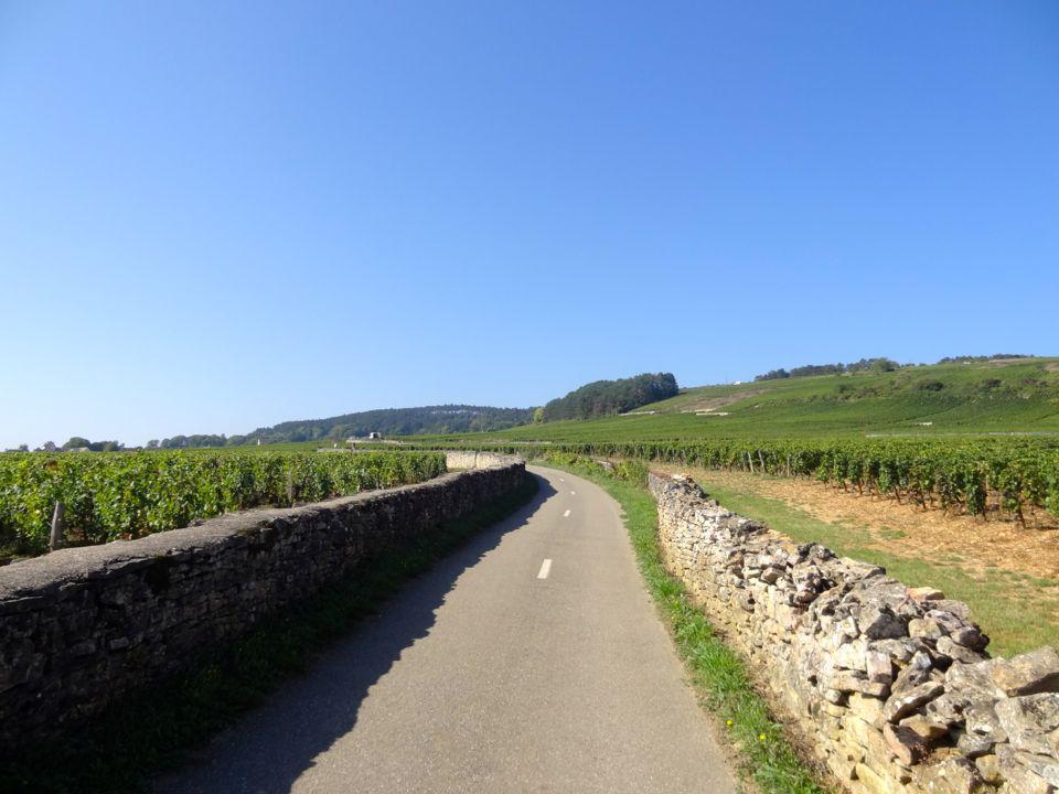 voie des vignes fantastic picnic