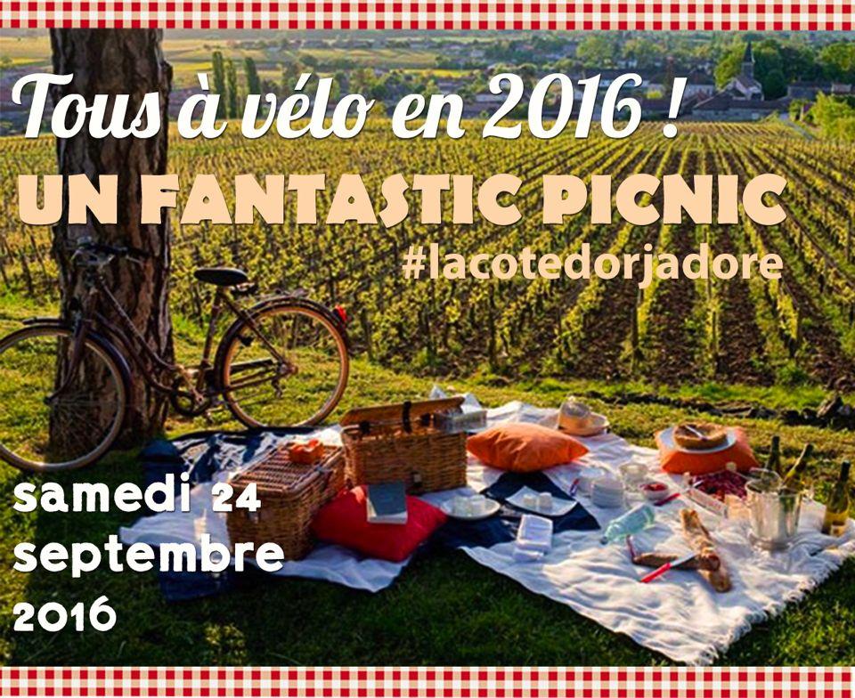 fantastic picnic
