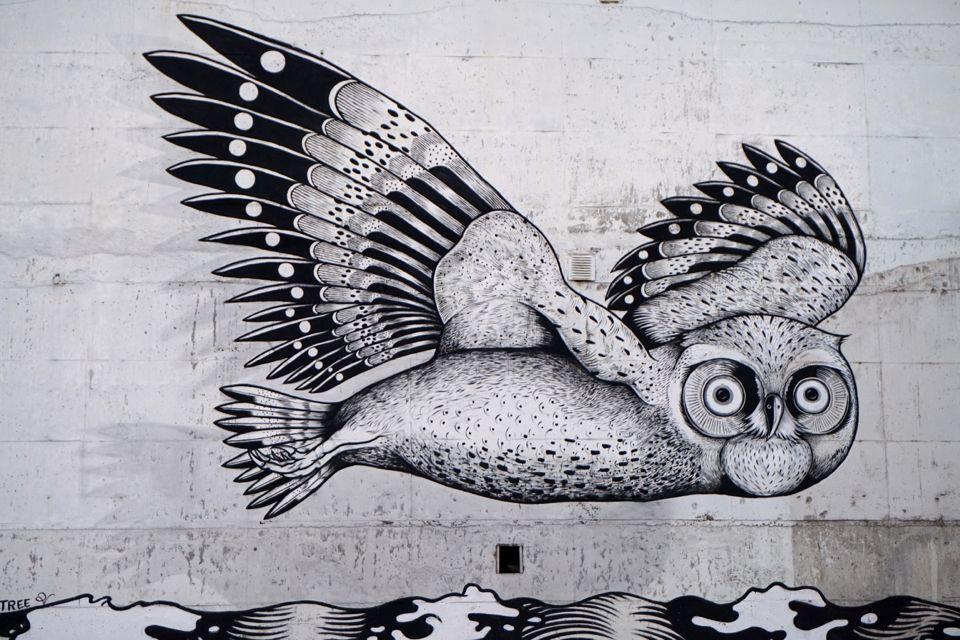 visiter tromso street art