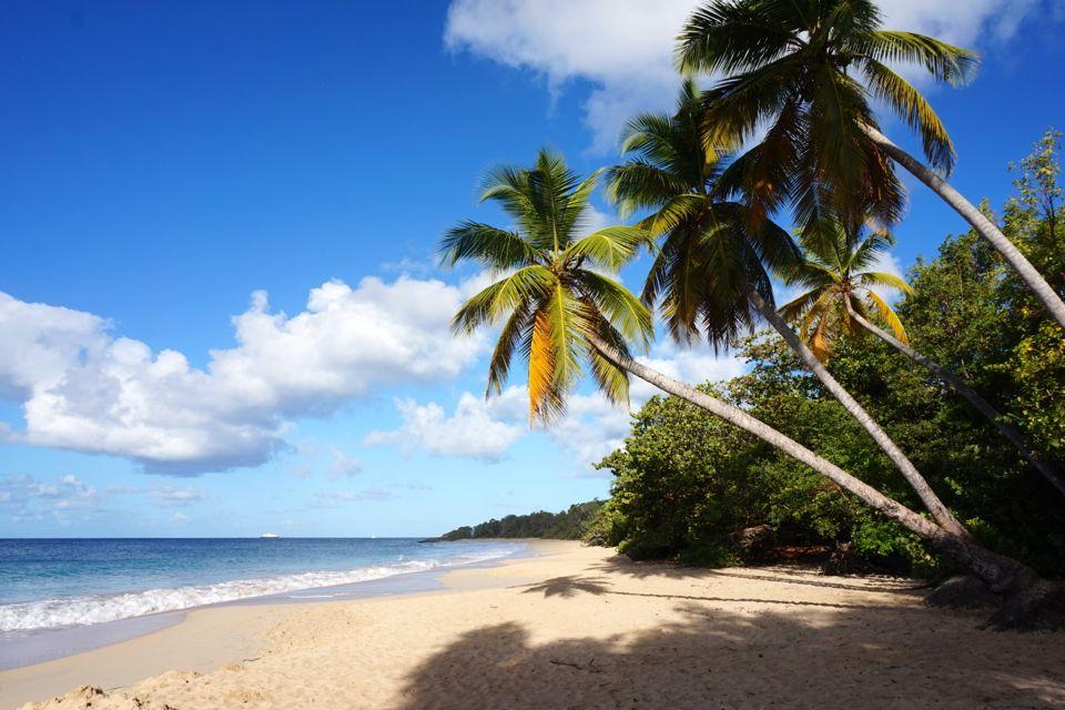 7 jours en Martinique