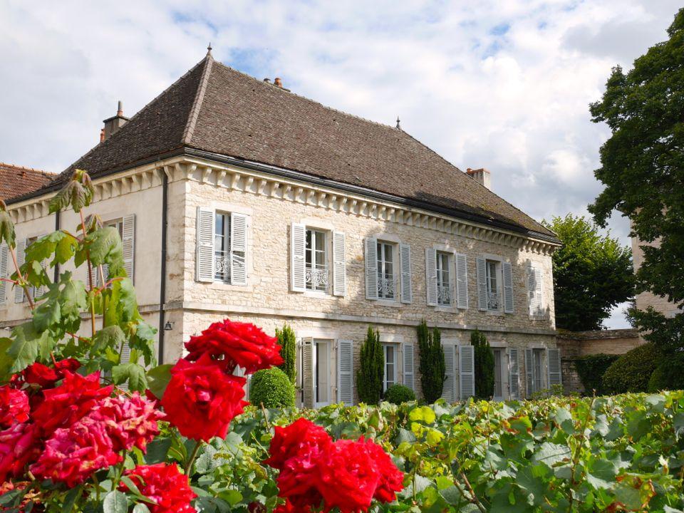 chateau_de_chassagne_montrachet