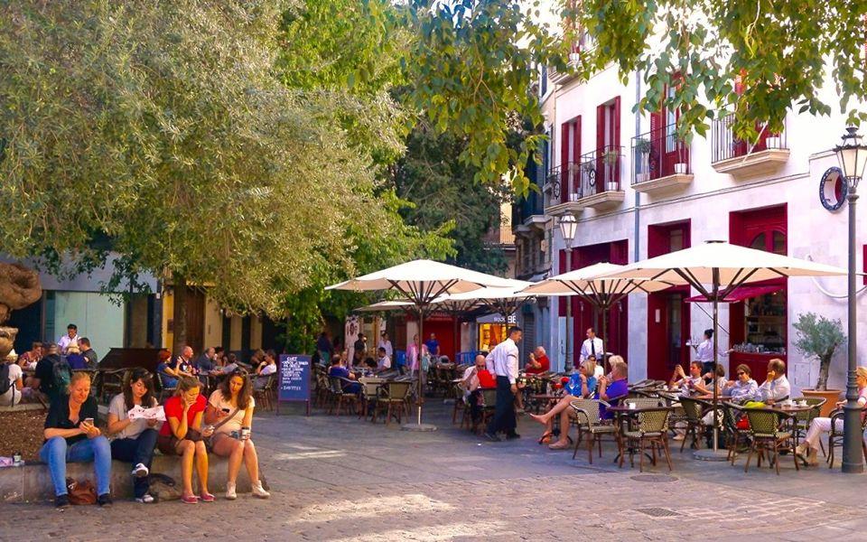 Visiter Palma en 1 journée
