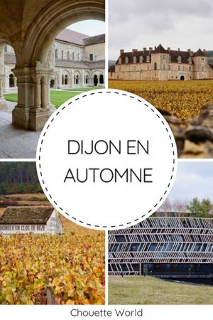 Dijon en Automne