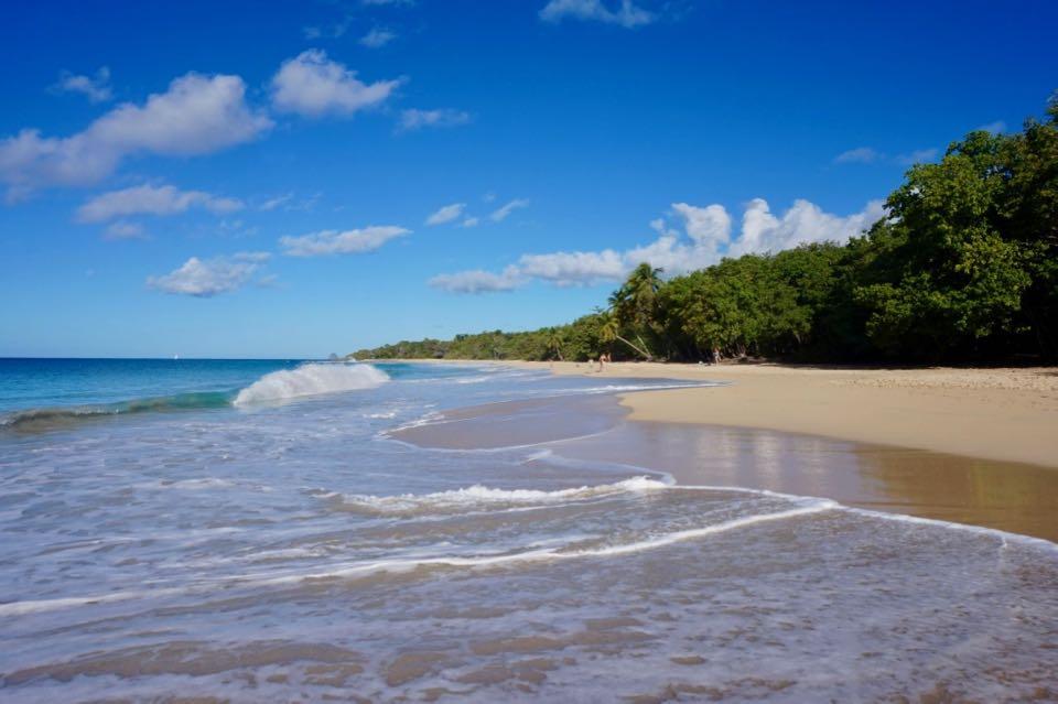 Visiter la Martinique : que faire ?