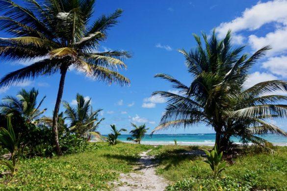 Plus belles plages de Martinique