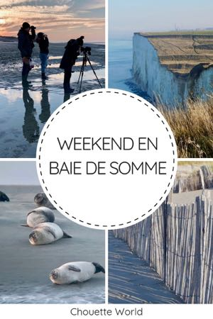Un weekend en Baie de Somme : que faire ?