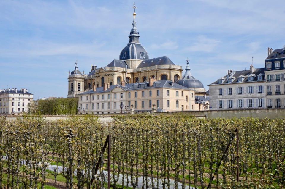 Que faire à Versailles : potager du roi