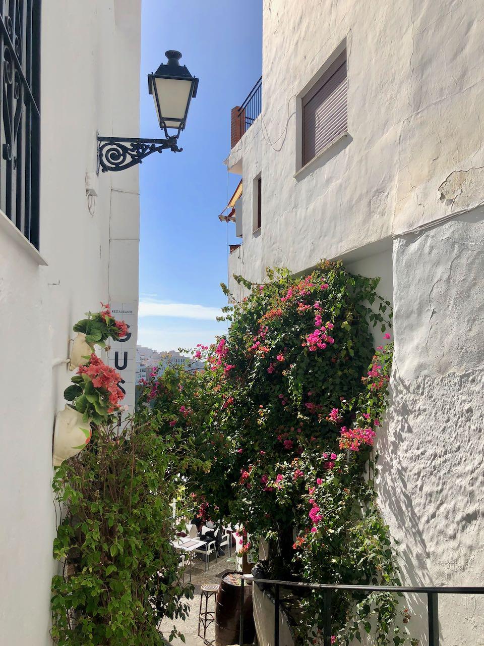 circuit andalousie : frigiliana