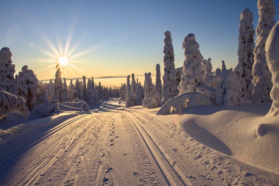 quand partir en Laponie