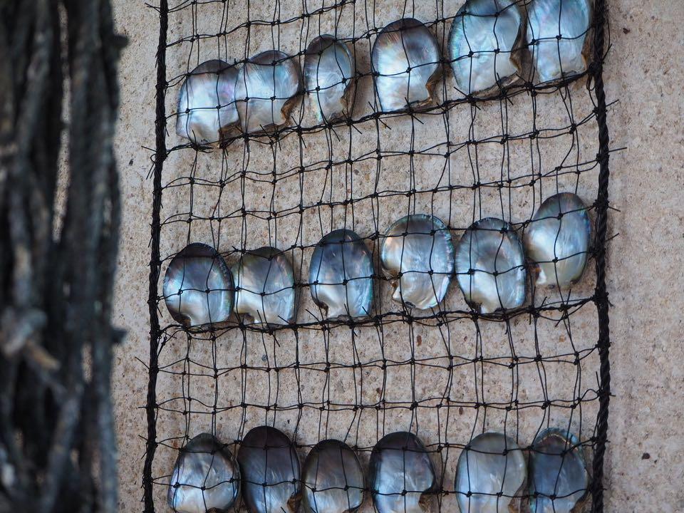 ferme perliere huahine